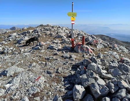 Вершина горы Лисинь. 1353 м