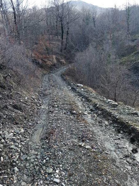 Сначала тропа идёт по грунтовой дороге