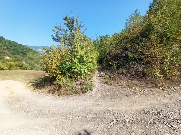 Начало тропы в каньон Мртвицы