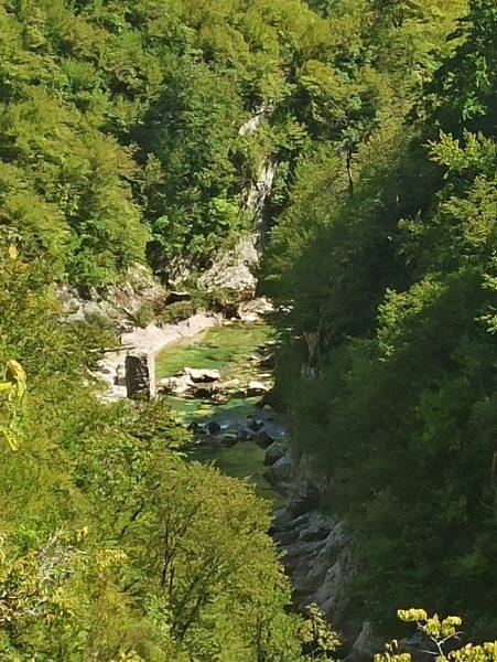 Руины деревянного моста через Мртвицу