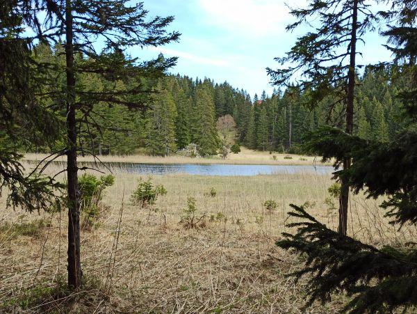 Барное озеро (Barno jezero)