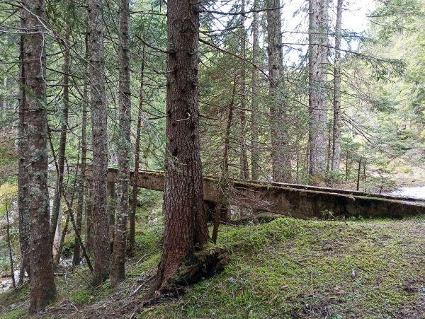 Бетонный мост через ручей