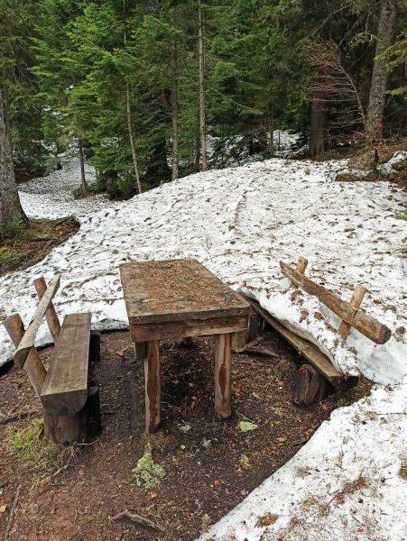 Место для пикника на Змеином озере
