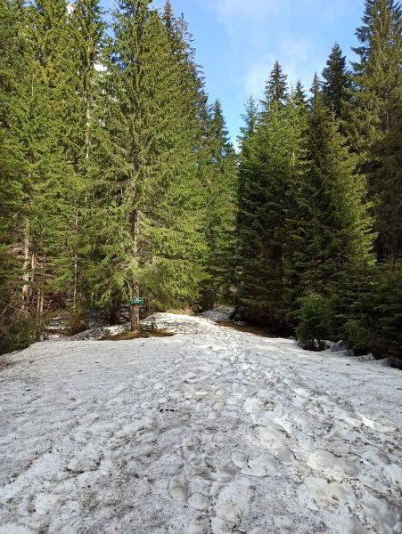 Снег на тропе к Змеиному озеру