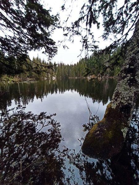 Змеиное озеро в парке Дурмитор